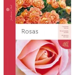 Jardinería fácil: Rosas...