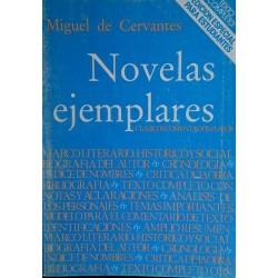Novelas ejemplares. Edición...